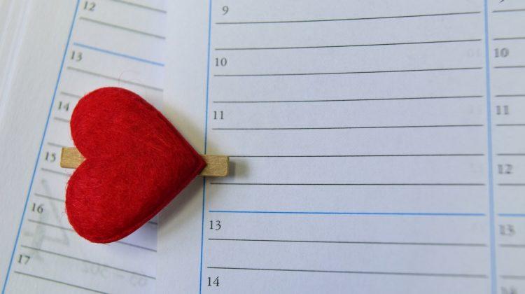 Parenting Schedule Calendar